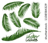 isolated vector palm leaves.... | Shutterstock .eps vector #1108584329
