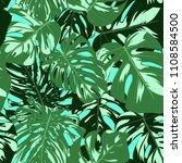 vector monstera leaves.... | Shutterstock .eps vector #1108584500