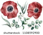 Watercolor Anemone And...