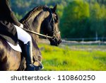 Stock photo riding on the black friesian horse in the sunset 110860250