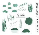 spirulina superfood set. vector ... | Shutterstock .eps vector #1108627889