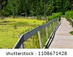 Wooden walkway with railing going back to an observation blind in Horicon Marsh Wisconsin.
