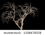 the branches of trees and trees ...   Shutterstock . vector #1108678328