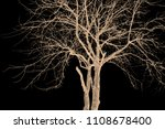 the branches of trees and trees ...   Shutterstock . vector #1108678400