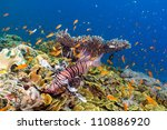 lionfish surrounded by small... | Shutterstock . vector #110886920
