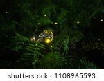 Fireflies In Bulb At Night