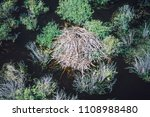 aerial of beaver lodge  spruce...   Shutterstock . vector #1108988480