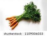 bunch of carrots | Shutterstock . vector #1109006033
