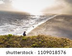 wild puffins in dyrholaey ... | Shutterstock . vector #1109018576