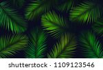 tropical background. palm... | Shutterstock . vector #1109123546