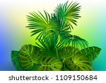 tropical background with banana ... | Shutterstock .eps vector #1109150684