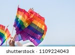 waving rainbow flags with david ... | Shutterstock . vector #1109224043