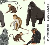Different Types Of Monkeys...