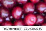 blurred background of ripe... | Shutterstock . vector #1109253350