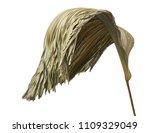 Leaf Of Ruffled Fan Palm...