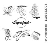 superfood hand drawn black and... | Shutterstock .eps vector #1109382776
