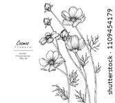 sketch floral botany... | Shutterstock .eps vector #1109454179