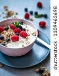 raspberry and blueberry granola ... | Shutterstock . vector #1109463698