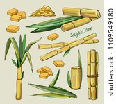 sugar cane icons. vector... | Shutterstock .eps vector #1109549180