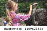 child in zoo park  girl feeding ... | Shutterstock . vector #1109628533