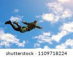 rangers parachuted from...   Shutterstock . vector #1109718224
