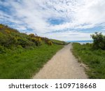 a path diverges in a park on a... | Shutterstock . vector #1109718668
