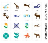 set of 16 icons such as horse ...