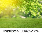 nature spring and summer grass... | Shutterstock . vector #1109765996