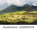 plaine des cafres  reunion... | Shutterstock . vector #1109818733