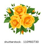 Three Yellow Roses. Vector...
