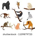 flat vector set of 9 species of ... | Shutterstock .eps vector #1109879720