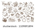 natural tasty fruits collection ... | Shutterstock .eps vector #1109891894