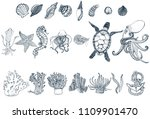 set of sea animals on white... | Shutterstock .eps vector #1109901470