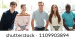 young people looking at camera... | Shutterstock . vector #1109903894