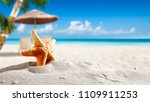 summer photo of beach and free... | Shutterstock . vector #1109911253