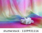 chunky quartz crystal cluster... | Shutterstock . vector #1109931116