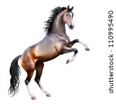 Stock vector vector photo realistic bay horse rearing up isolated on white background 110995490