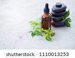 aromatherapy oil with fresh... | Shutterstock . vector #1110013253