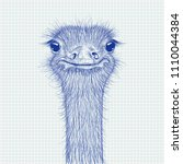 ostrich sketch. head closeup on ... | Shutterstock .eps vector #1110044384