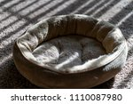 Stock photo pet cat and dog bed near window in the sun 1110087980