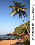 Sunlit palm tree over the beach Goa India - stock photo