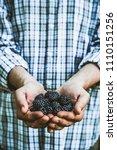 organic fruit. farmers hands... | Shutterstock . vector #1110151256