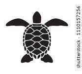 graphic sea turtle  vector | Shutterstock .eps vector #1110157256