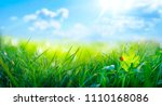 spring summer background with... | Shutterstock . vector #1110168086