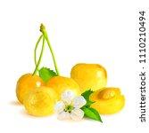 fresh and tasty yellow cherries.... | Shutterstock .eps vector #1110210494