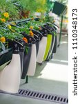 garden sprayer in market | Shutterstock . vector #1110348173