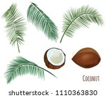 set tropical plants  brown... | Shutterstock .eps vector #1110363830