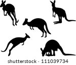 kangaroo collection vector   Shutterstock .eps vector #111039734