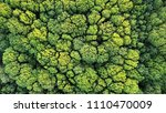 aerial top view of green trees... | Shutterstock . vector #1110470009