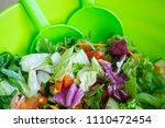 fresh mixed salad with... | Shutterstock . vector #1110472454
